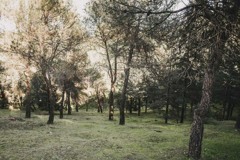 hilario_sanchez_fotografo_bodas_campo_sesion_pareja_001