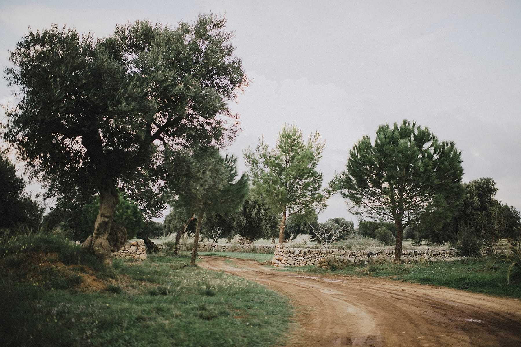 hilario_sanchez_fotografo_boda_ostuni_italia_092