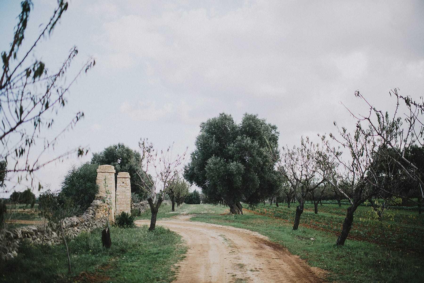 hilario_sanchez_fotografo_boda_ostuni_italia_304