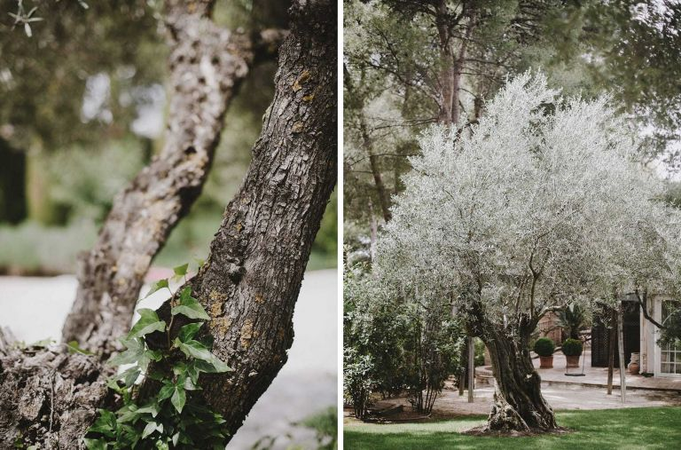 finca_cigarral_de_las_mercedes_hilario_sanchez_fotografo_boda_toledo_002